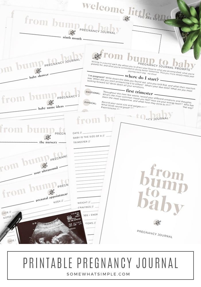 from bump to baby pregnancy journal