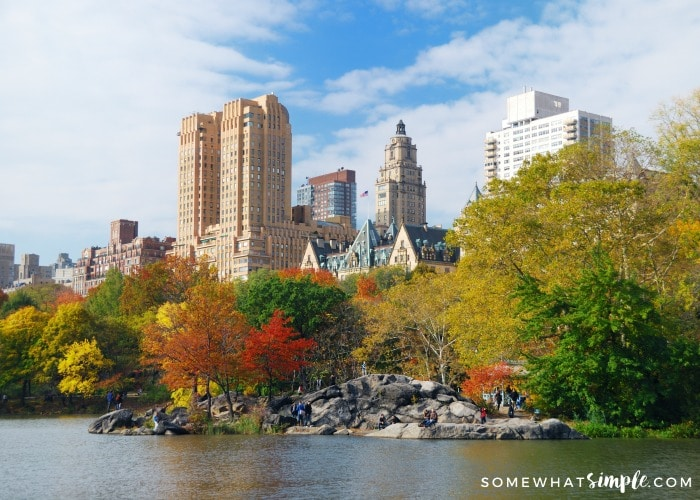New York City Travel in the Fall
