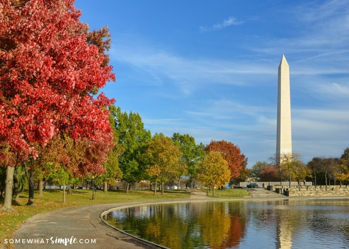 Washington DC Travel in the Fall