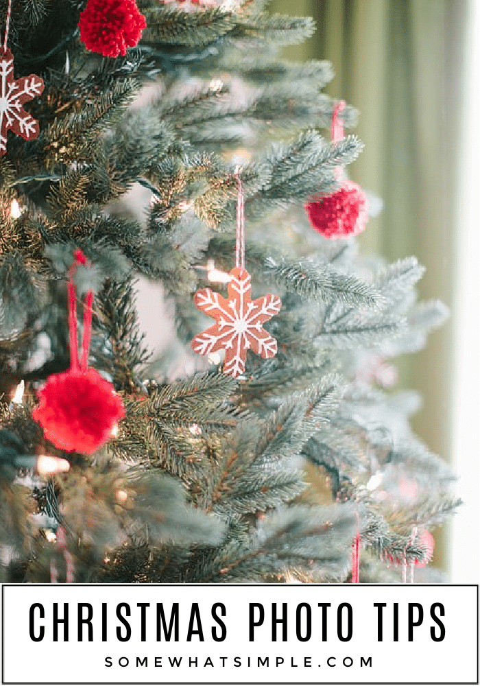 close up of a chrismtas tree with red pop poms