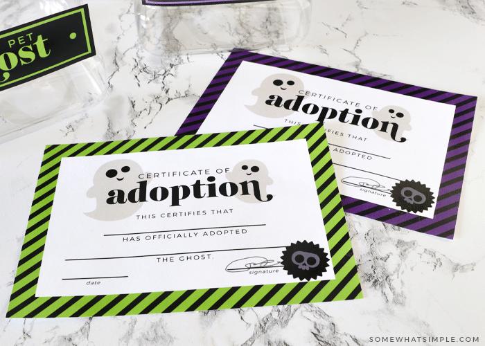 pet ghost adoption certificates