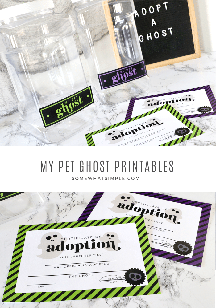 pet ghost cage and printables laying on the counter