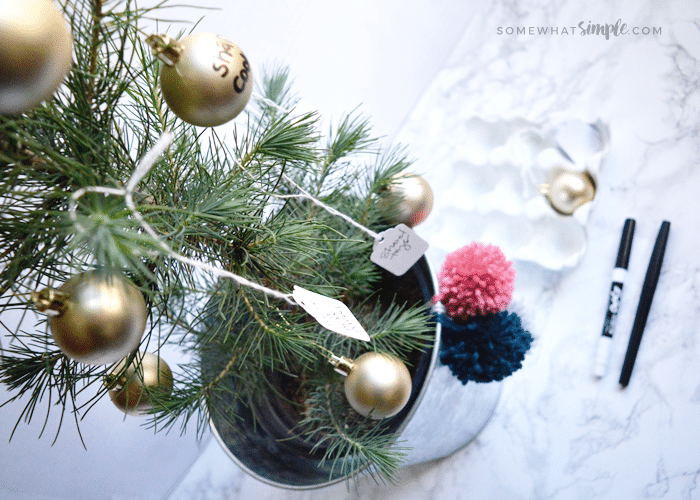 a small christmas tree in silver pot