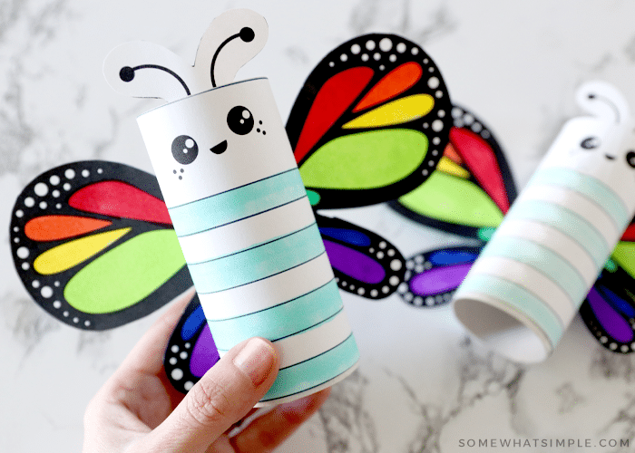 finished butterfly craft