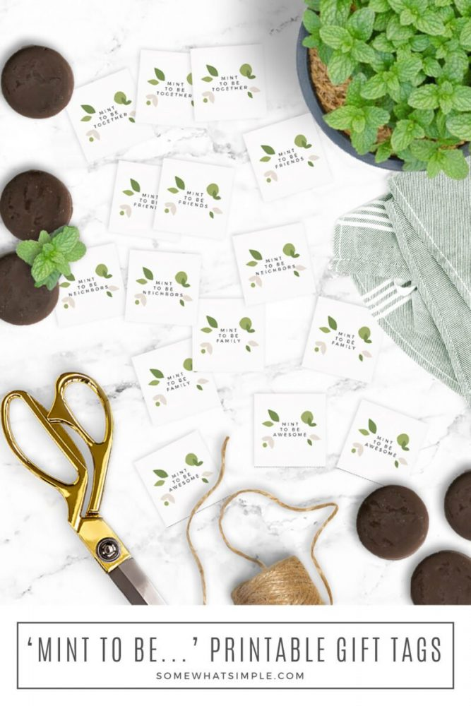 long image of gift tags with a mint plant and mint cookies